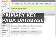primary key database